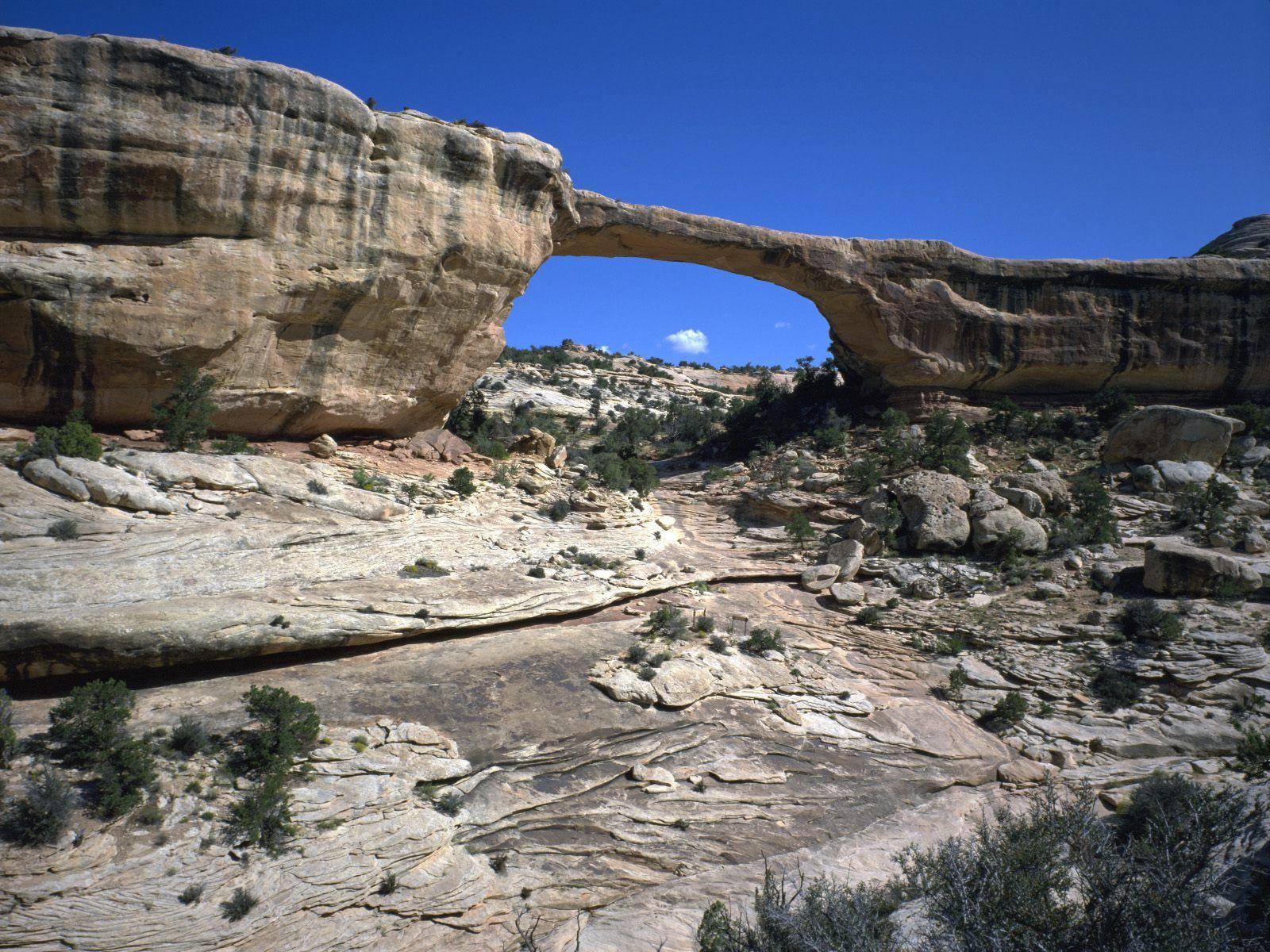 Owachomo Bridge, Natural Bridges National Monument, Utah