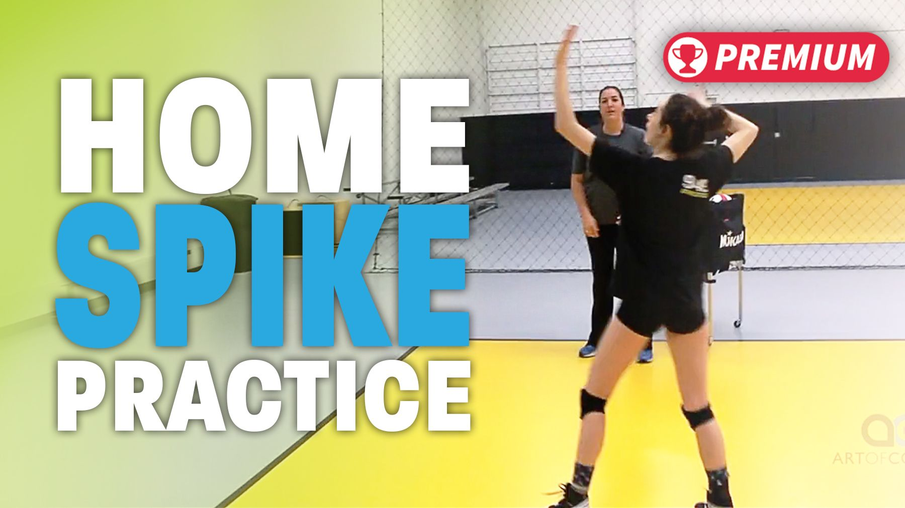Cary Wallin Home Spiking Practice The Art Of Coaching Volleyball Coaching Volleyball Volleyball Workouts Volleyball Practice
