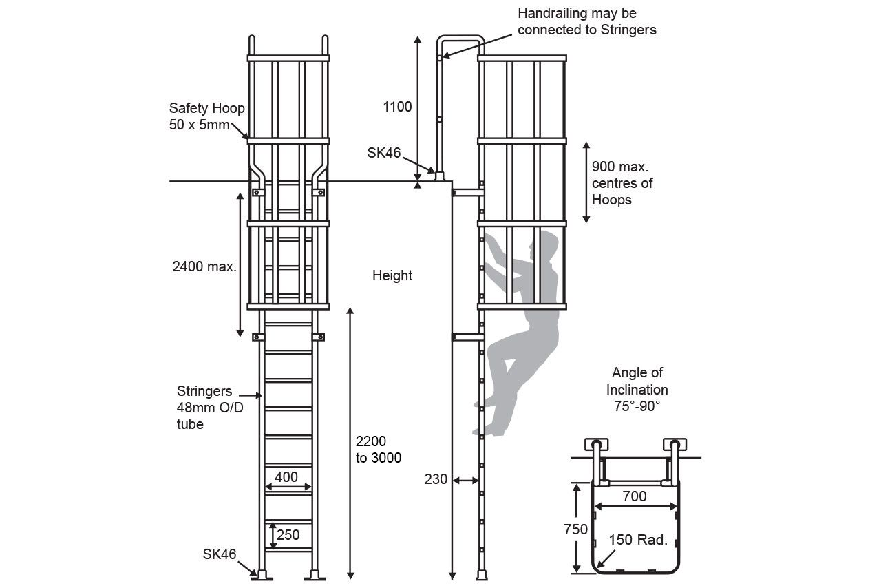 Standard Ladder Vertical Access Ladder Fixed Ladder Cat
