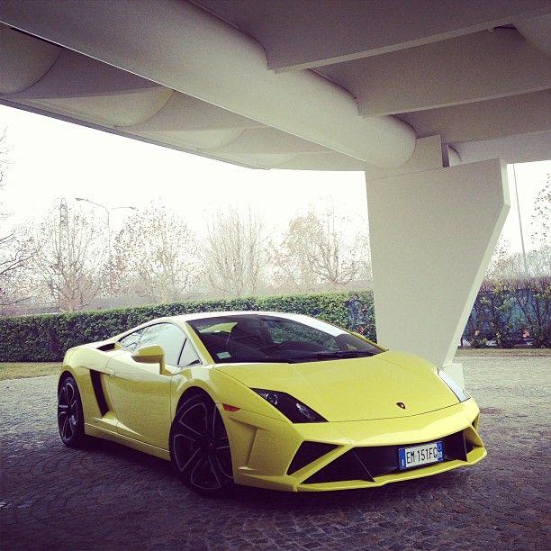 Stunning Yellow Lamborghini Gallardo