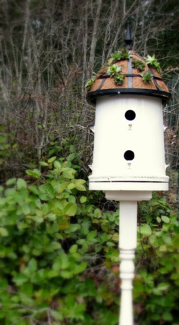 How to Make a Bucket into a Bird House