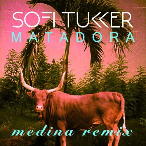 Matadora (Medina Remix) by SOFI TUKKER | Free Listening on SoundCloud