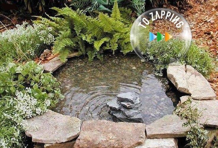 C mo hacer paso a paso un estanque para el jard n hogar for Estanque artificial para tortugas
