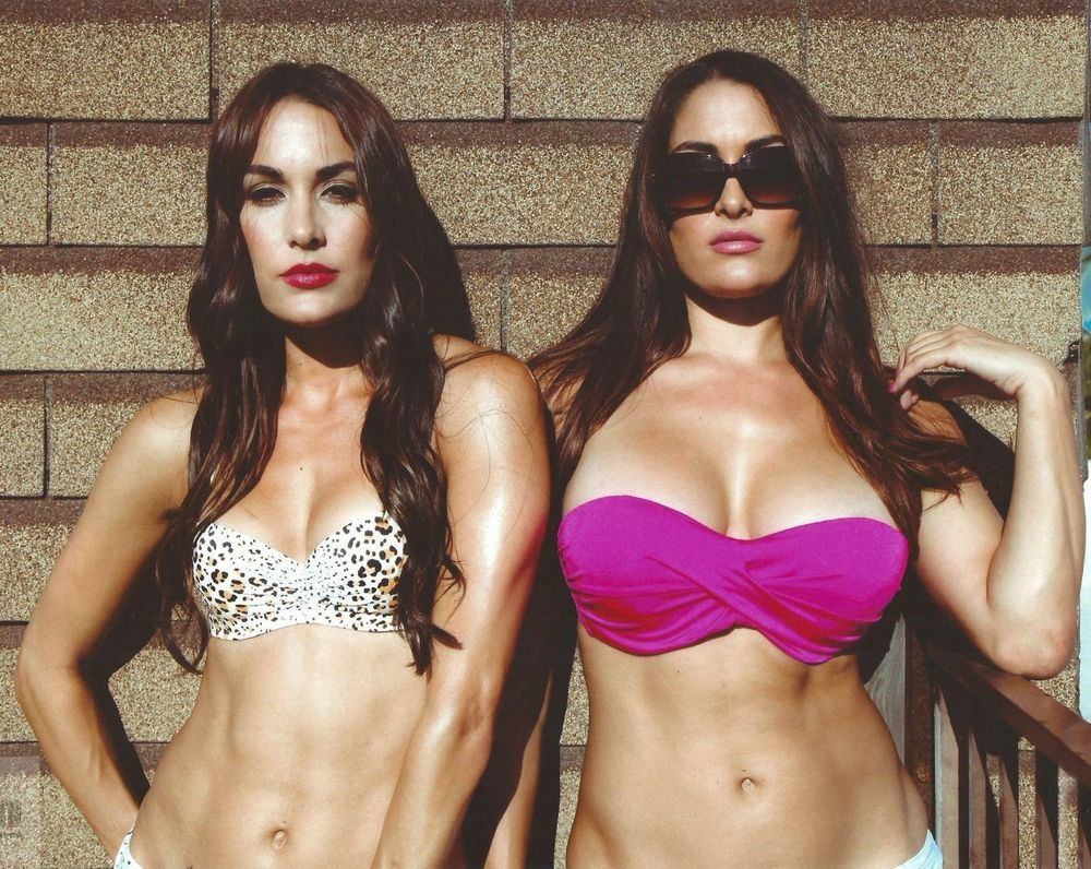 Celebrity The Bella Twins nudes (68 foto and video), Ass, Fappening, Boobs, braless 2015