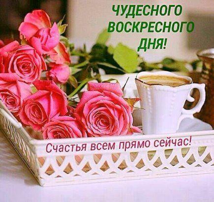 14 Odnoklassniki Dobroe Utro Otkrytki Pozdravitelnye Otkrytki