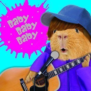 Funny guinea pig birthday card singer with guitar baby baby baby funny guinea pig birthday card singer with guitar baby baby baby bookmarktalkfo Image collections