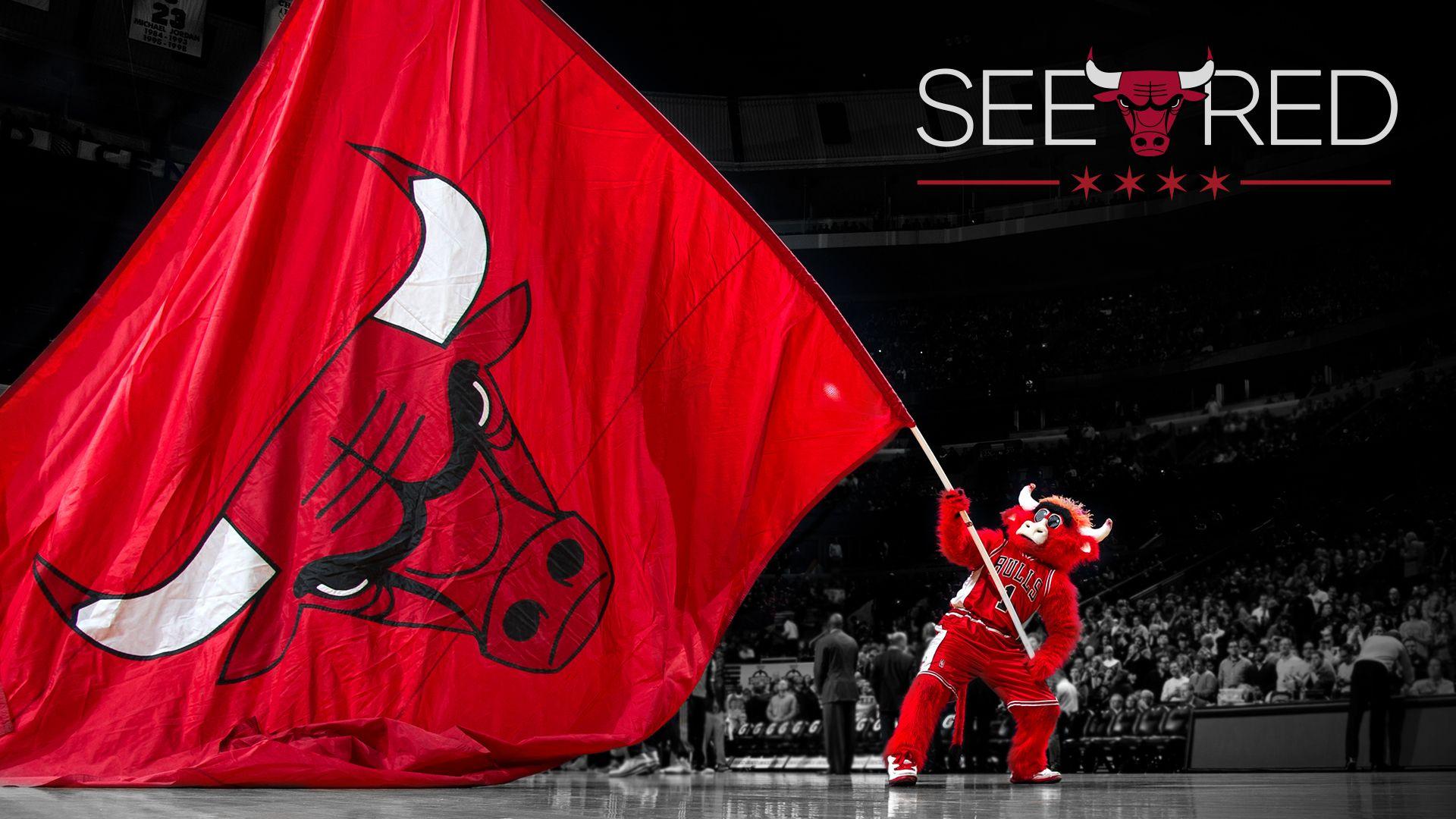See Red Chicago Bulls Playoffs Chicago Bulls Wallpaper Chicago Bulls Benny The Bull