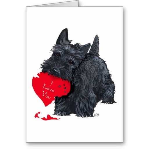 scottish terrier valentines | ... valentine s day clothing household and gift items with this scottish