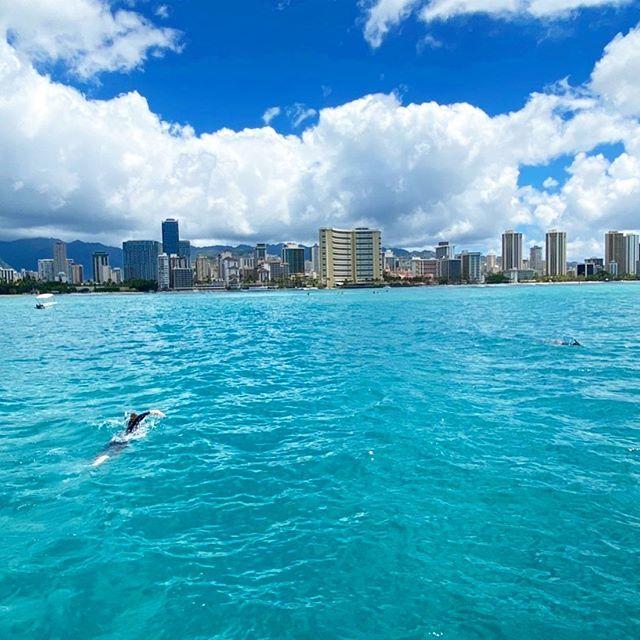 PC: @mayahawaii325 🤙🏼🌺🌴 ワイキキ沖で泳ぐこと2時間。サーフィンに憧れはじめた。(今さらにもほどがある) #hawaii #waikiki #swimming 🔥🔥🔥Hawaii Luau Company- Hawaii's Premiere Corporate Event, Luau, Wedding and Entertainment Company. www.hawaiiluaucompany.com #hawaiiluaucompany#huakailuau #huakai#waikiki🌺 #mauiisland #waikikibeaches #waikikiphotography #honolulu #waikiki #hawaiibound #hawaiilove #oahuweddingplanner #oahuevents #hawaiibuilt #waikikielopment #waikikivibes #oahuluau #luauinwaikiki #koolina #luau #honolulu🌴 #vi
