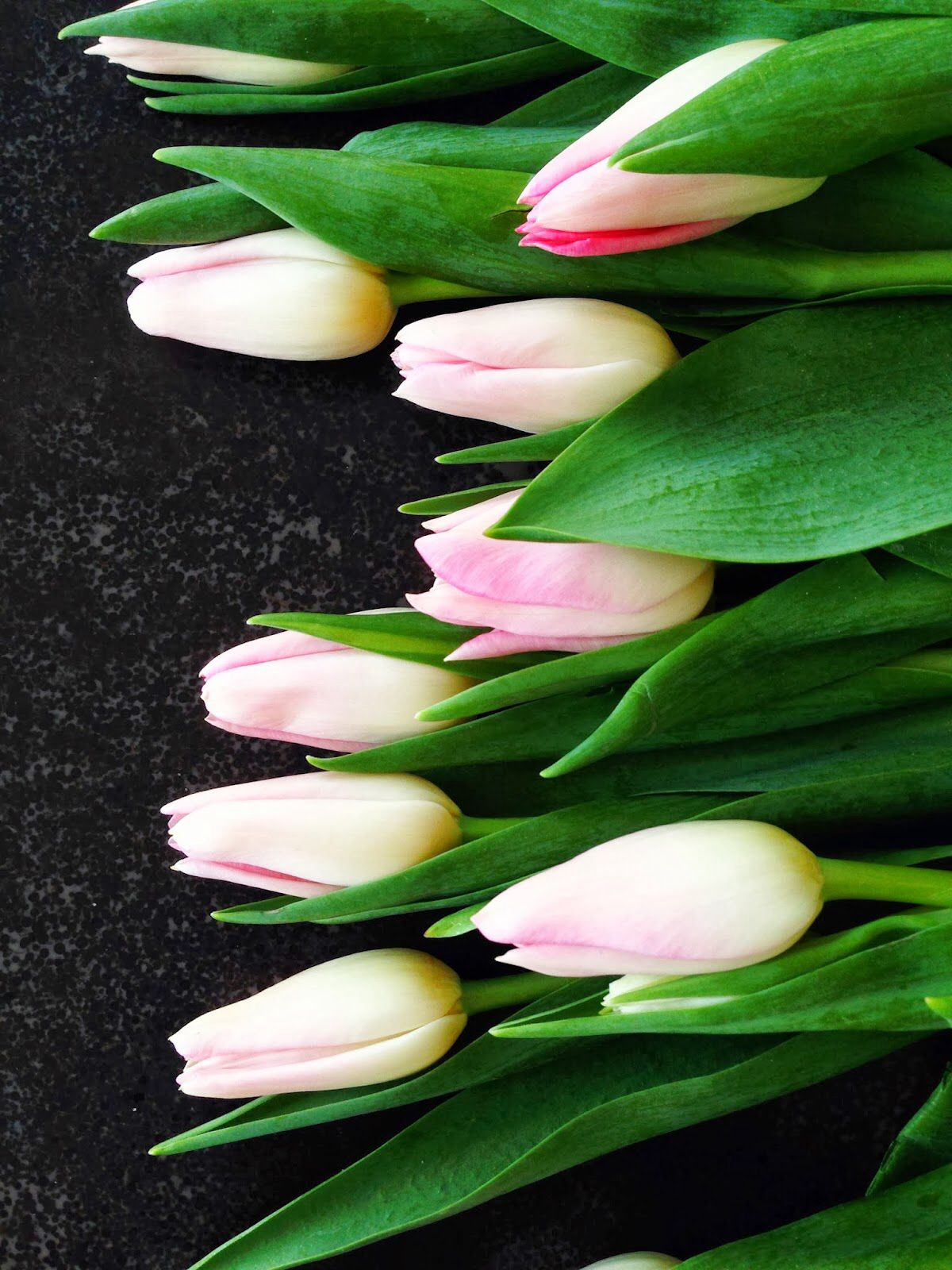 Appetizer Spring Tulips. Guests are delighted with this design
