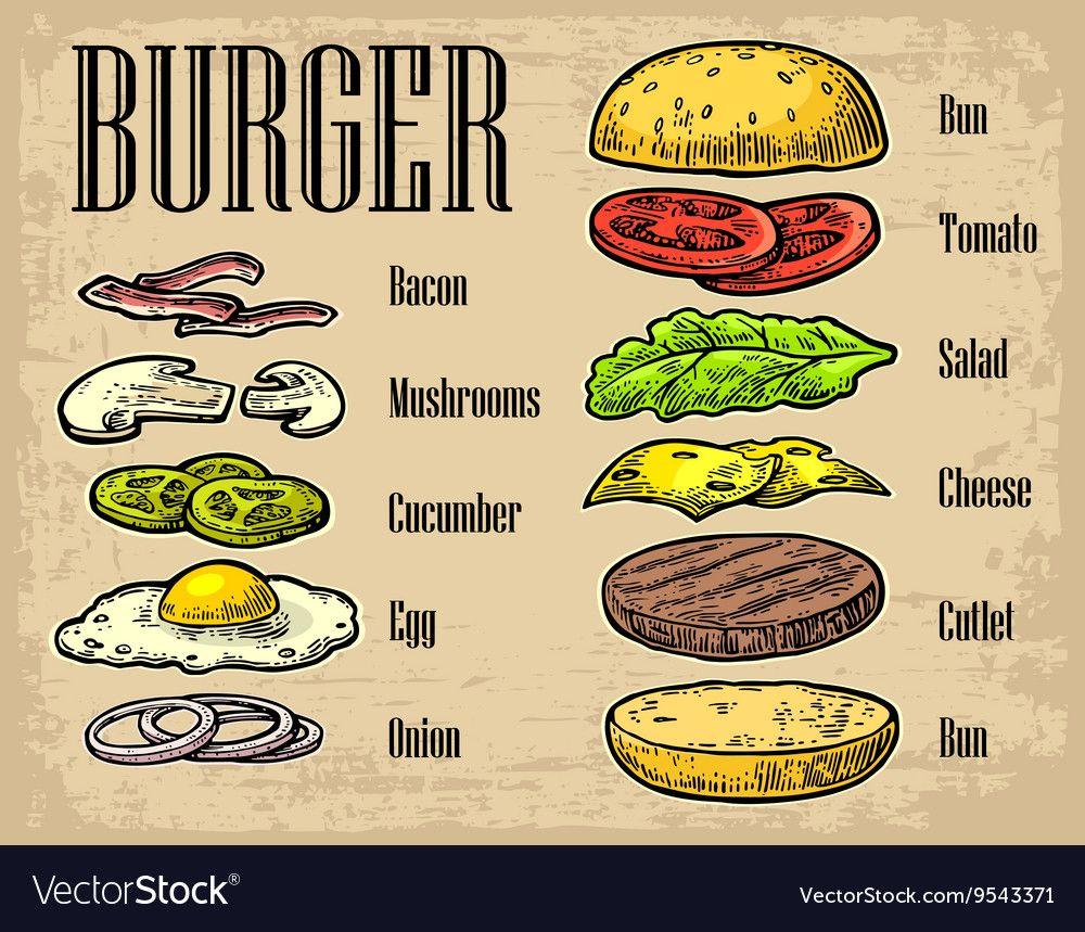 Burger ingredients on black background Royalty Free Vector