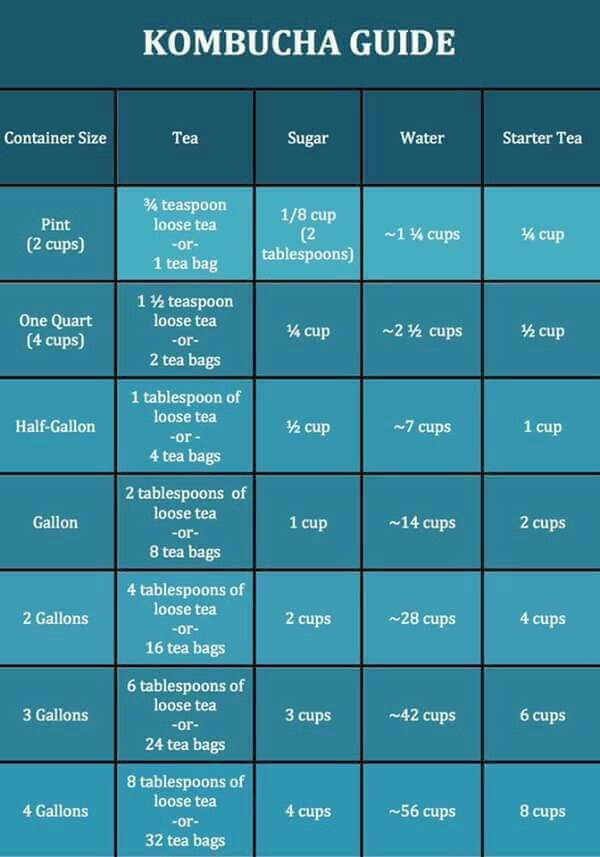 Kombucha Brewing Ratio Guide