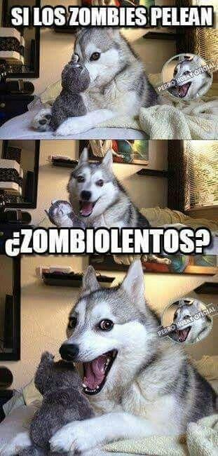 Eso Pensaran Lo Perros V Memes Divertidos Meme Gracioso Memes De Risa
