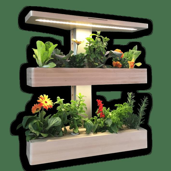 14 Indoor Smart Garden Ideas You Will Love Wall Plants 400 x 300