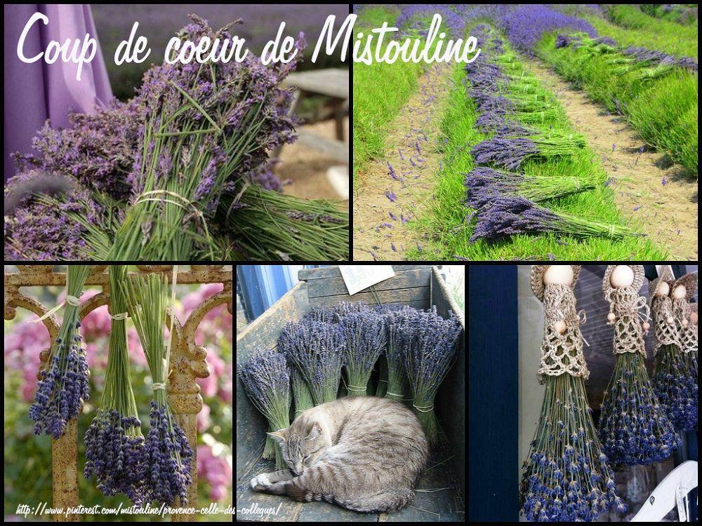 Coup de coeur de Mistouline... http://mistoulinetmistouline.eklablog.com/