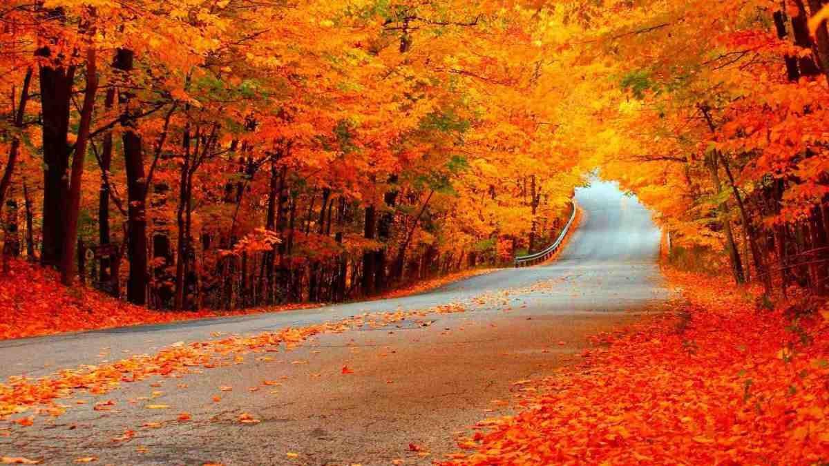 Wordpress Com Fall Wallpaper Photography Wallpaper Cool Landscapes