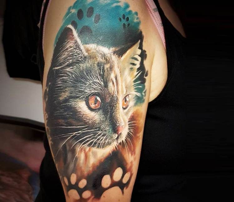 Cat Tattoo By Marek Hali Cat Tattoo Cat Portrait Tattoos Cat Dog Tattoo