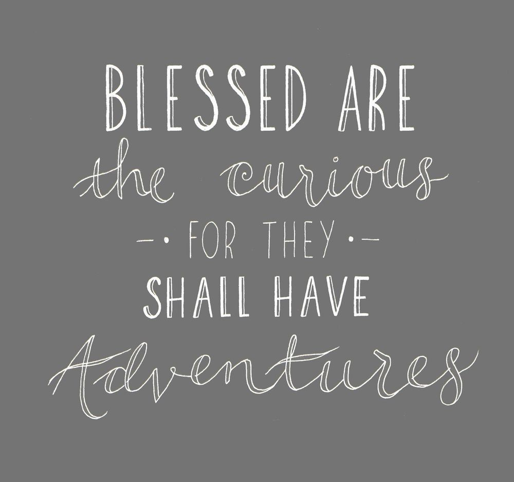 Quote Blessed Are The Curious For They Shall Have Adventures