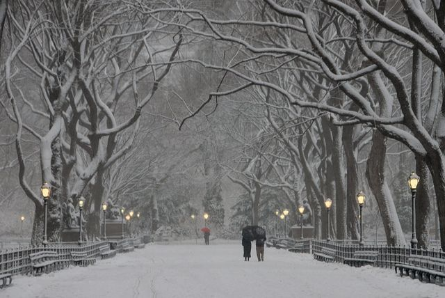 Central Park, NYC in the winter. I want to take a carriage ride in the snow.