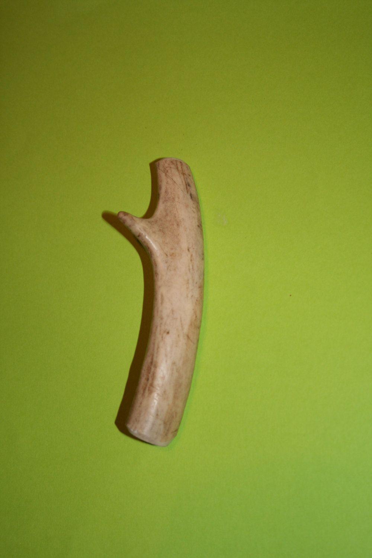 Natural Whitetail Deer Horn Antler Dog Chew Bone Small Or Medium