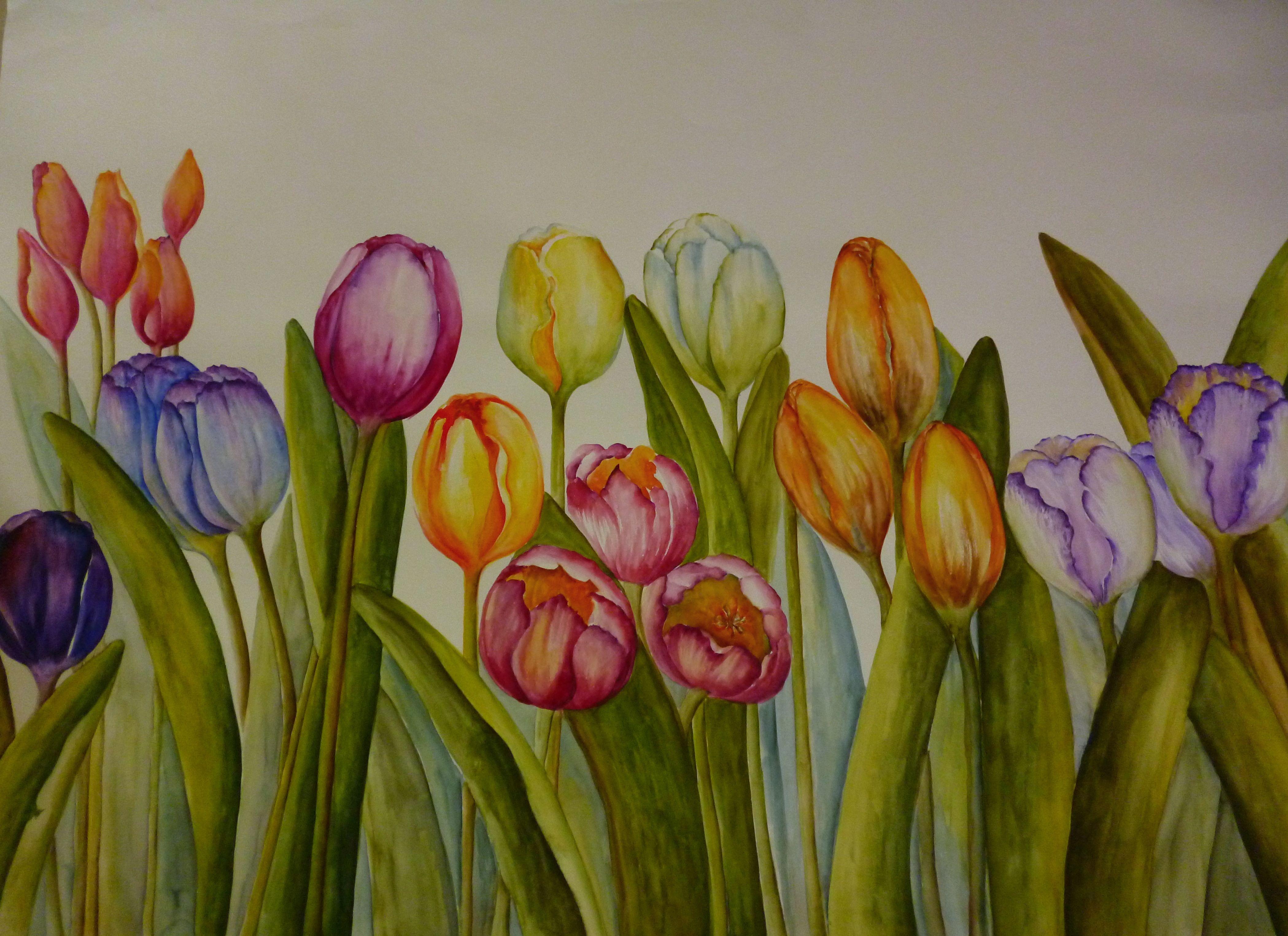 tulipanes en acuarela