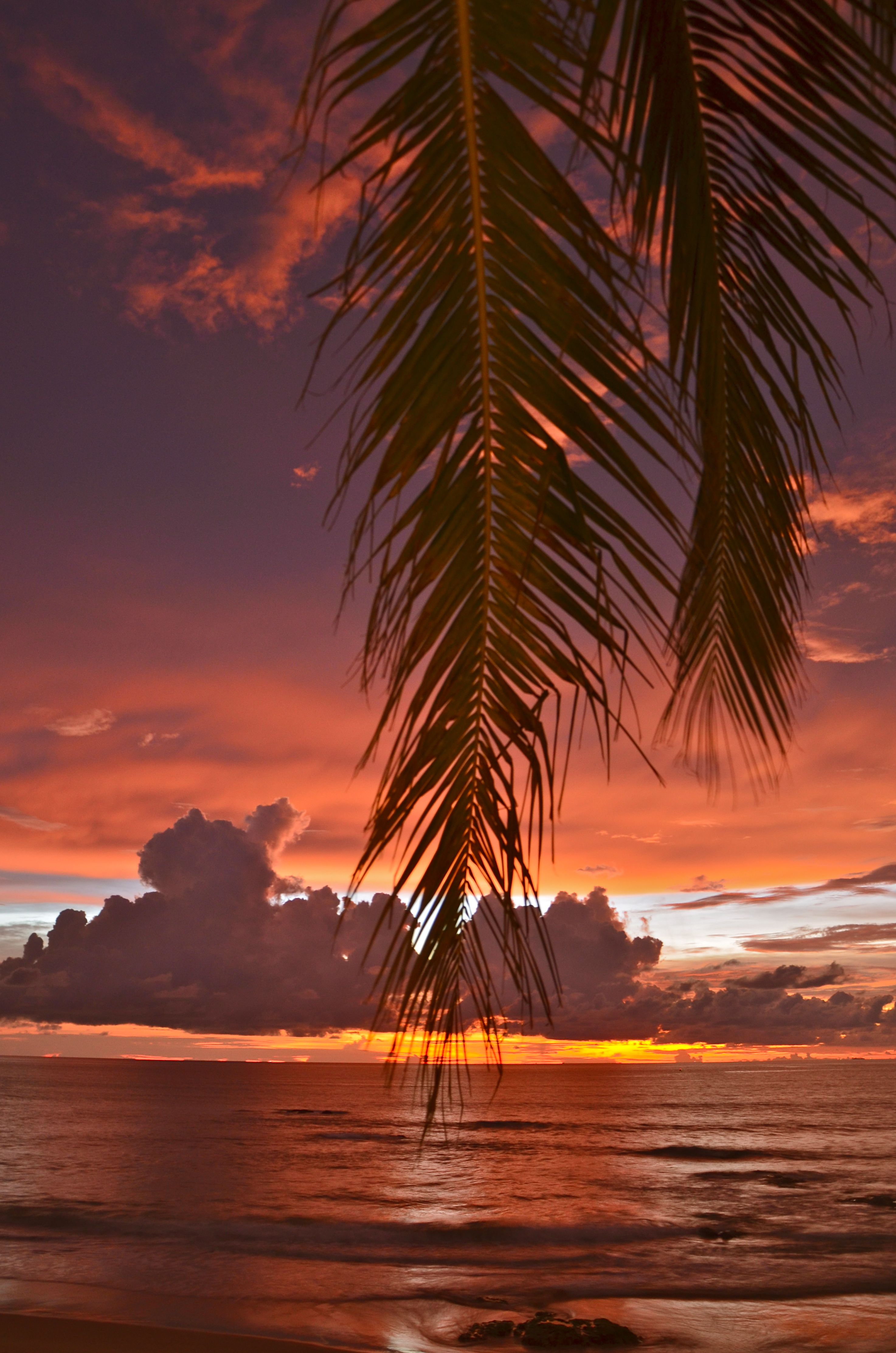 Really magic sunsets at Kamala Beach, Phuket, Thailand. With love ...