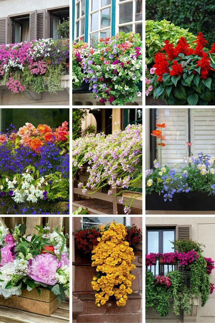40 window and balcony flower box ideas photos balcony