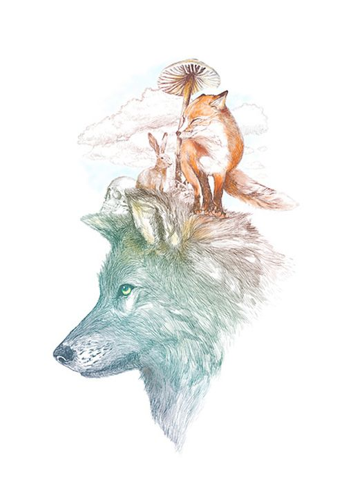 Foxes in my head cool drawing pinterest foxes for Cool fox drawings