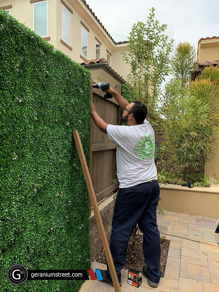 DIY Green Walls in 2020   Artificial green wall, Patio ... on Green Wall Patio id=57945