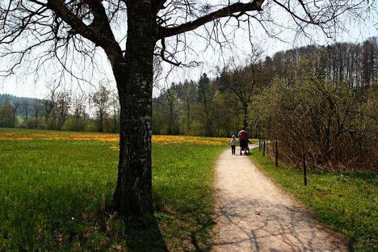 walk for kids around Türler Lake with GeoCache trail - near Zurich, Switzerland