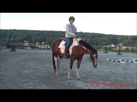 slowing down a fast horse youtube horses pinterest faster rh pinterest com