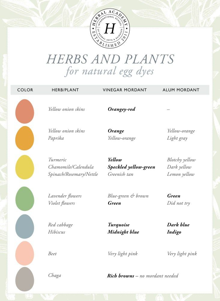 How To Dye Easter Eggs Naturally   Herbal Academy   Chemical dyes are not the only option when decorating Easter eggs. Here's how to use herbs and common food to dye Easter eggs naturally!