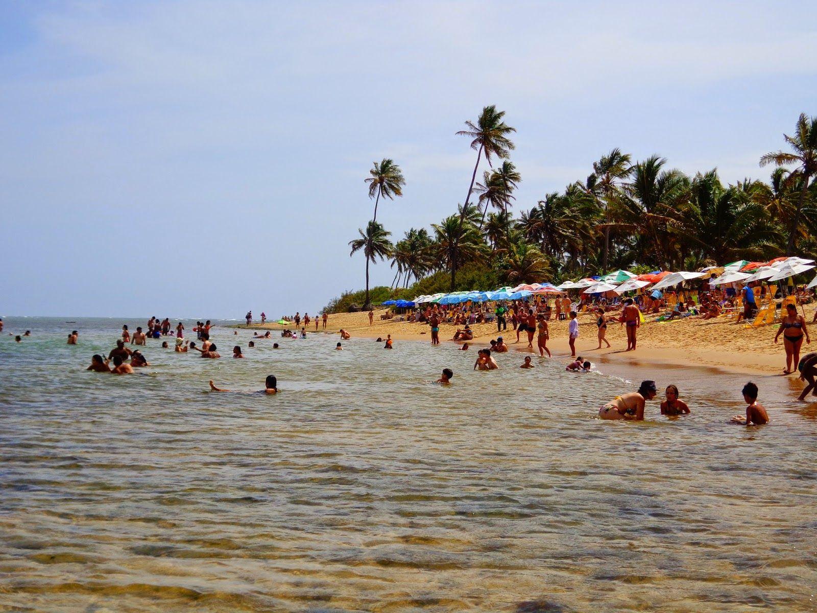 praia do forte http://vanezacomz.blogspot.com.br/2014/11/praia-do-forte-piscinas-naturais-na.html
