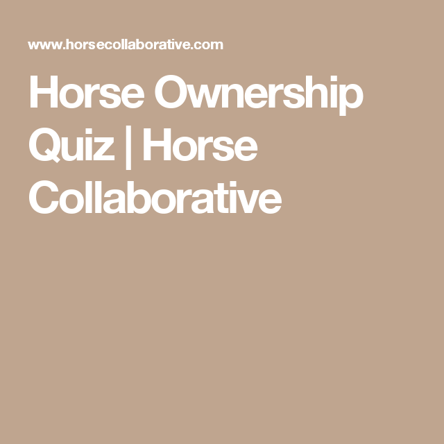 Horse Ownership Quiz | Horse Collaborative