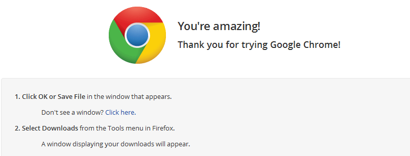 You're amazing!  Thank you for trying Google Chrome!