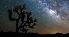 Photo of 9 Mindblowing Stargazing Sites in California's High Desert