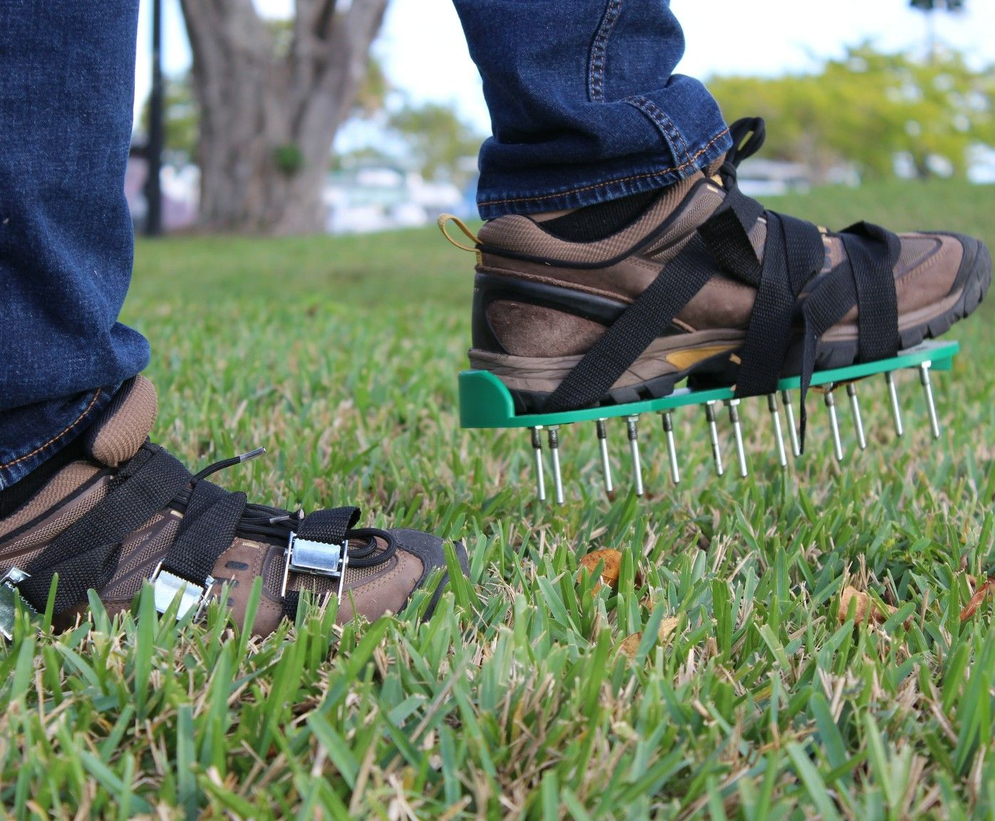 20 Metal Spikes Plus 3 Straps Will Allow You To Aerate Your Lawn And Get A Healthier Grass Aerate Lawn Aerator Healthy Grass