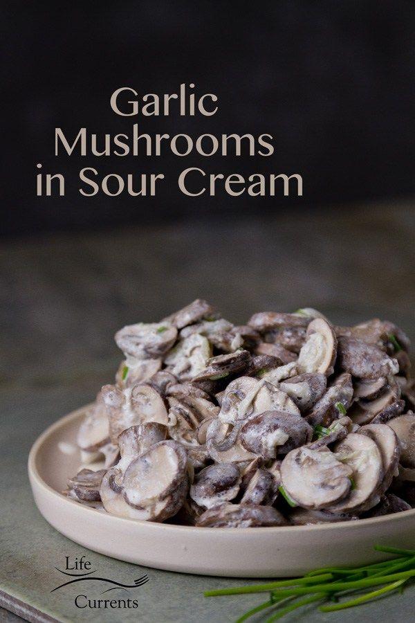 Garlic Mushrooms On Toasted Ciabatta - All Mushroom Info