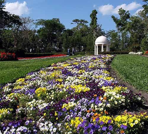 87fca0bd0259f591d506a163c0cd1a48 - Cypress Gardens Adventure Park Winter Haven Fl