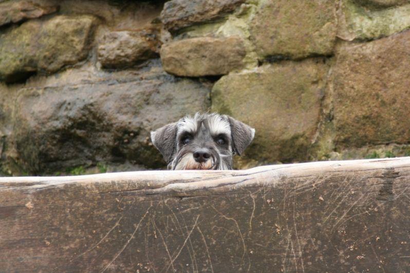 I am watching you. :)