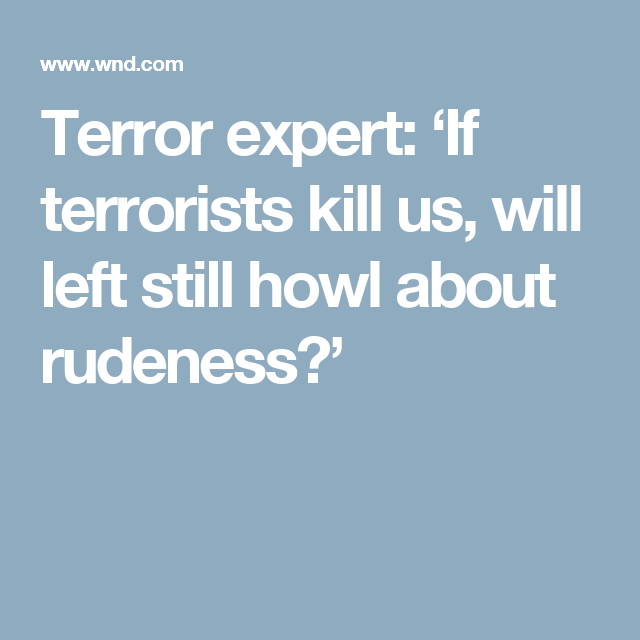 Terror expert: 'If terrorists kill us, will left still howl about rudeness?'