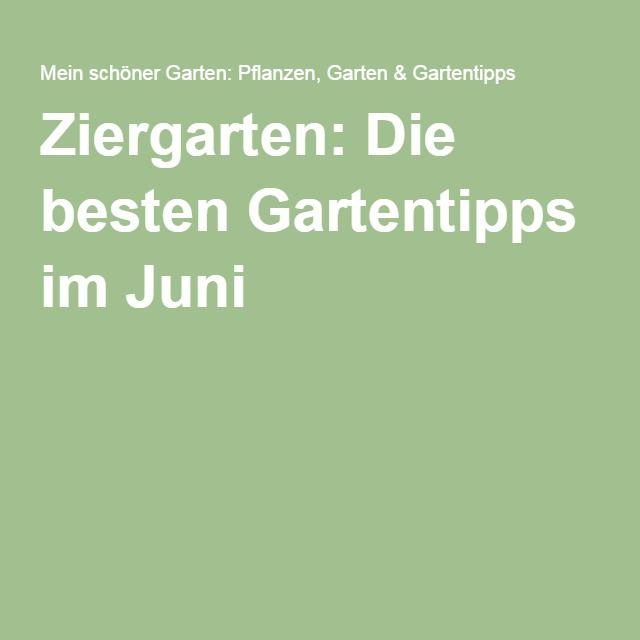 1000+ Ideas About Rosen Düngen On Pinterest | Gartendünger, Rosen ... Einige Regeln Die Man Beim Umpflanzen Beachten Muss