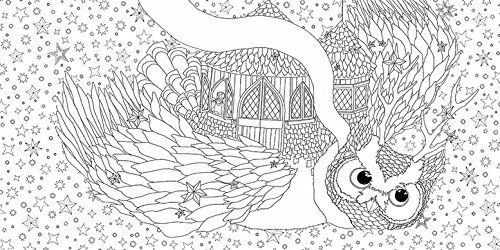 51cfzgreqil Jpg 500 250 Owl Coloring Pages Coloring Books Coloring Pages