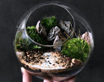 terrarium de bureau paysage dans bocal en hexagone par doodlebirdie mini landscape pinterest. Black Bedroom Furniture Sets. Home Design Ideas
