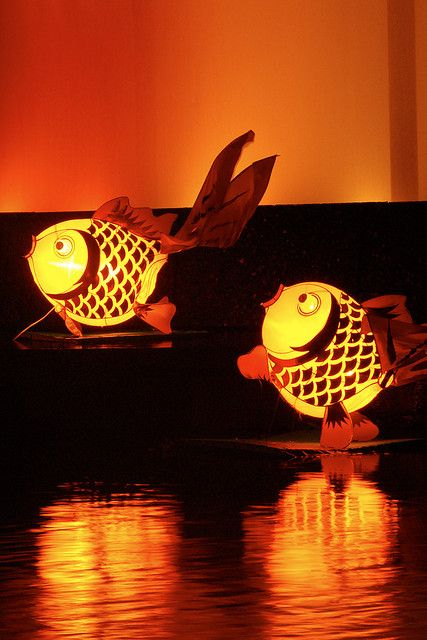 chinese lantern festival fish pinitianxia pinterest lampions bunt und welt. Black Bedroom Furniture Sets. Home Design Ideas