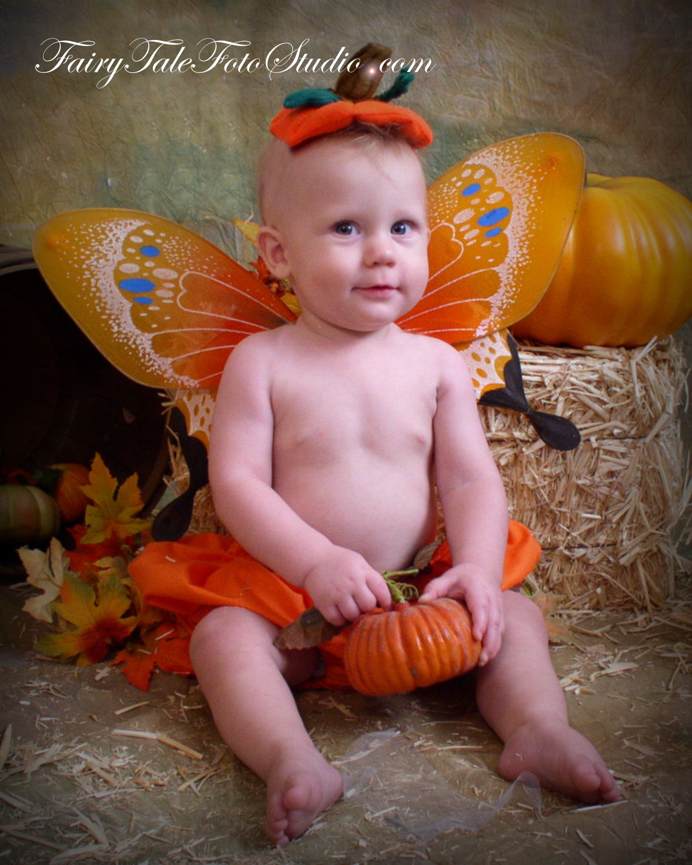 Cute Baby Fairies: Baby Boy Pumpkin Fairy 8 Month Old Fall/Halloween