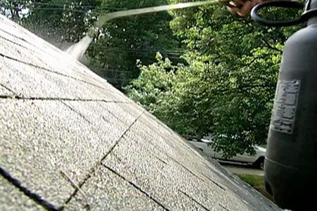 Preventing Roof Moss With Zinc Strips Cool Roof Roofing