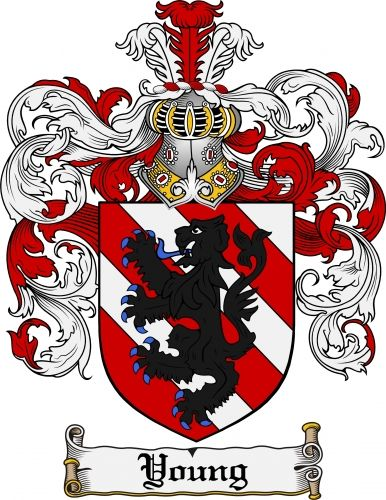 Young Coat of Arms Young Family Crest Instant Download - for