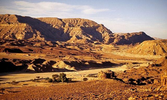 Marcha sobre las asfixiantes dunas del Sinaí en medio de una guerra sin cuartel por el desierto.