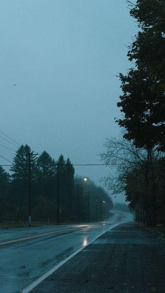 Silent Evenings (shija12)